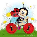 ladybug_nata