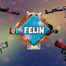 Felin_omg