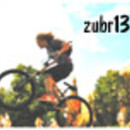 zubr133