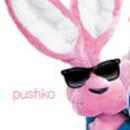 Pushko
