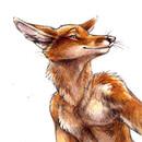 TOXA_Fox