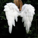 Angel777