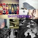 _Skateboard - all my life_