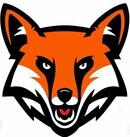 Mad Fox Customs