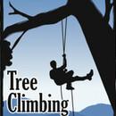 TREECLIMBING (Древолазание при помощи альп. снаряжения)