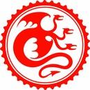 eGorynych bike accessories