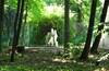 Измайлово-Яузский лесопарк, Богатырский пруд, немного Сокольников и ЛО