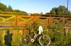 Пл. Чертаново - парк Царицыно(велодорожки)