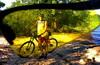 Разведка северной части Оболони, парки, леса, пляжи. (LITE)