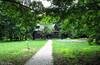 Прогулка по Измайловскому парку,экскурсия на Царскую пасеку