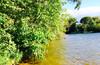 Отдыхательная на Учинском водохранилище