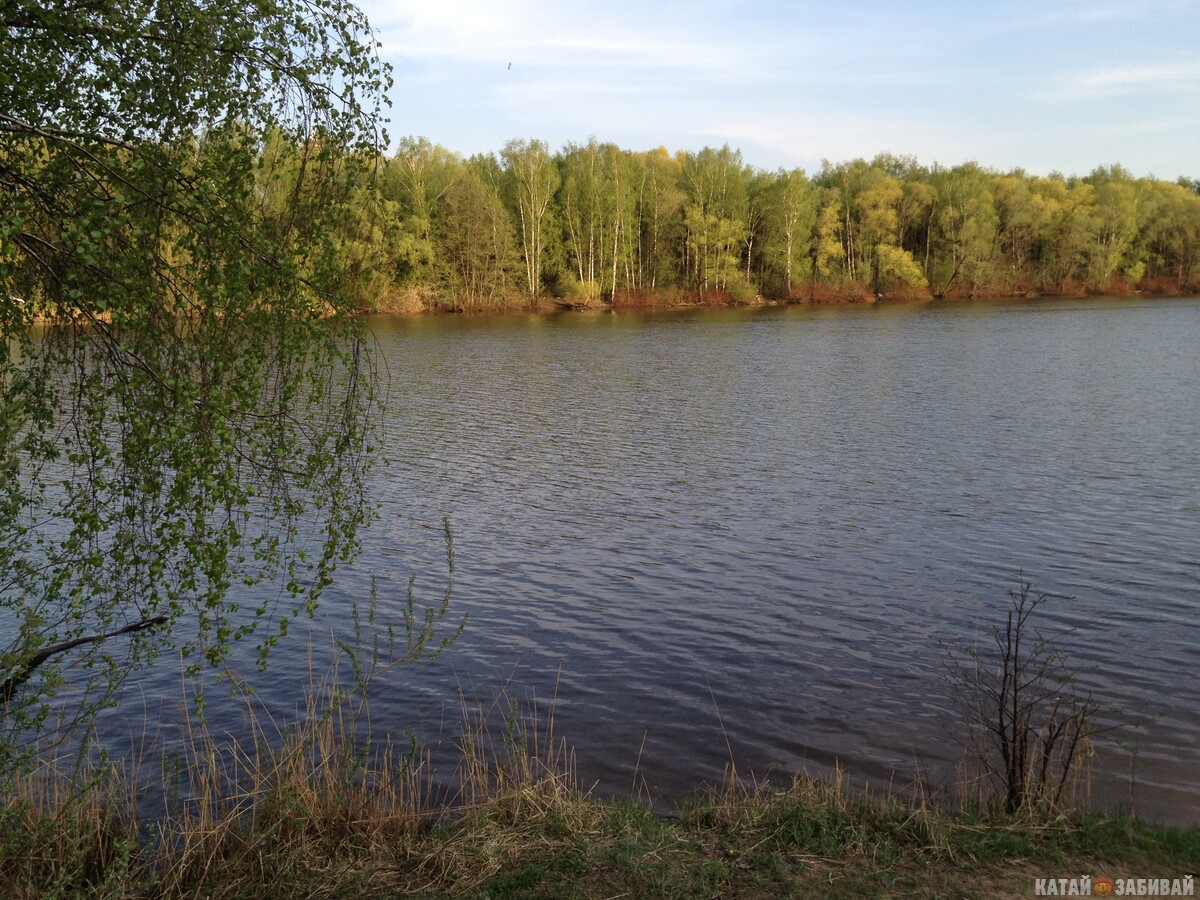 http://katushkin.ru/imgcache2/photo-1200x750/c5/04/6f32001b925009a6c251080d344b-248409.jpg