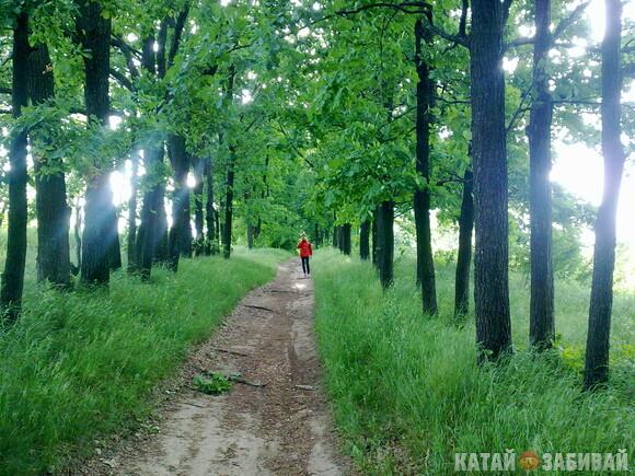 http://katushkin.ru/imgcache2/photo-580x350/01/de/7e632ad8a1655fddd4a457b09bb6-258126.jpg