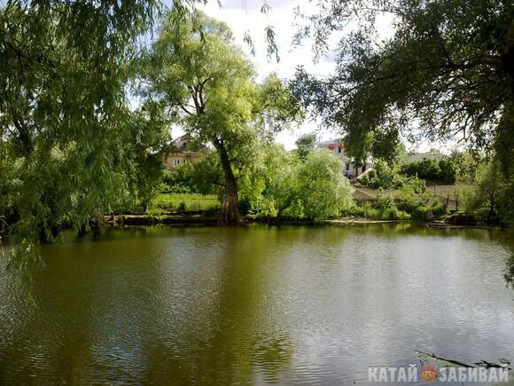 http://katushkin.ru/imgcache2/photo-580x350/17/c7/30aef3dba64447129babe315d3c6-260618.jpg