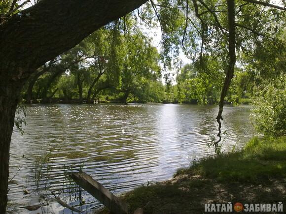 http://katushkin.ru/imgcache2/photo-580x350/43/0c/5bc7e512c90f2e67d3c62fbf4526-260616.jpg
