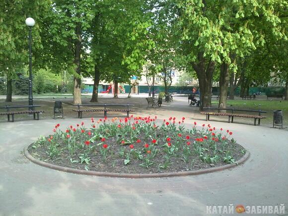 http://katushkin.ru/imgcache2/photo-580x350/4a/8b/aa400f3e126c99de2f1617e0aa88-242490.jpg