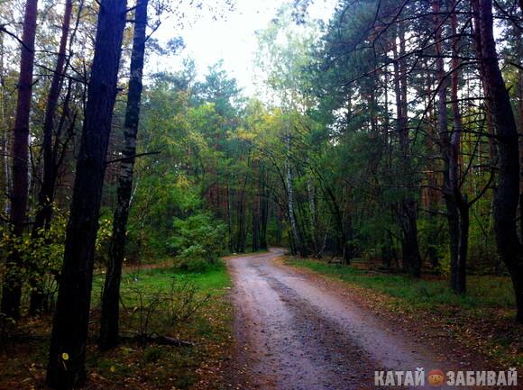 http://katushkin.ru/imgcache2/photo-580x350/8b/56/e57f10bccb06379eaa4641be3ed5-201219.jpg