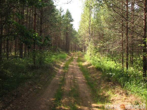 http://katushkin.ru/imgcache2/photo-580x350/a4/57/a0d21ea7321b775ecec7beb7f949-590967.jpg