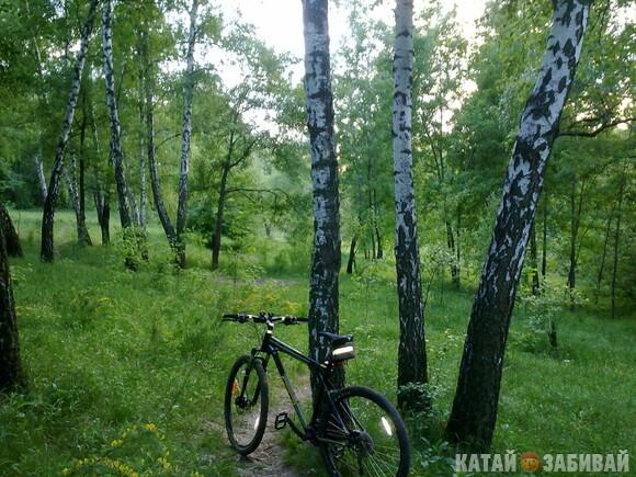 http://katushkin.ru/imgcache2/photo-580x350/d9/55/1419d17413953b394620a631ebc0-250769.jpg