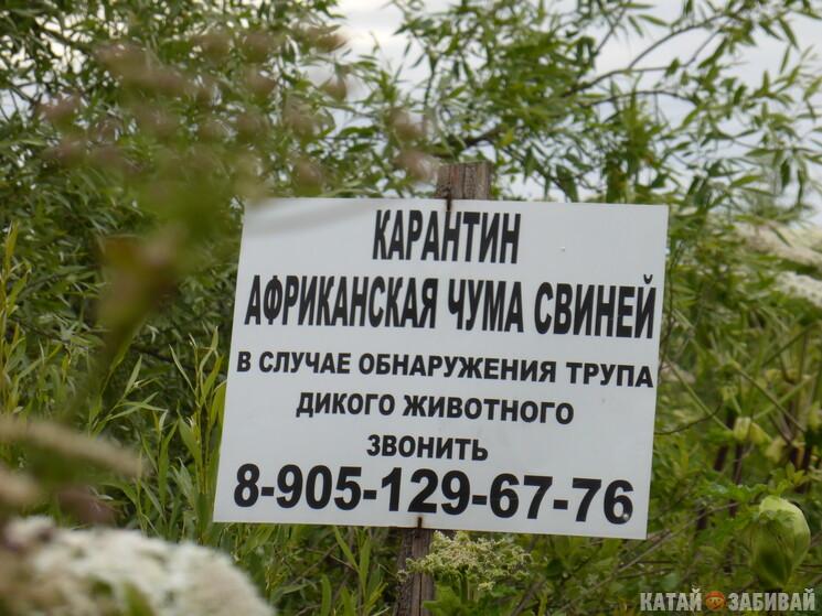 http://katushkin.ru/imgcache2/photo-745x450/42/63/08f4f93c5e4bde2603b3dc5a6ea9-424383.jpg
