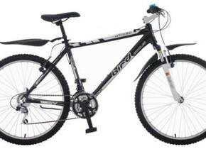 Велосипед Bird Rider