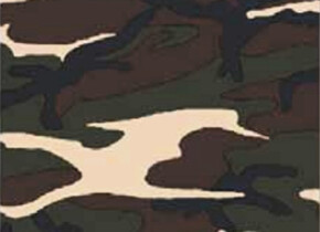 Головные уборыWind X-treme COOLWIND Camouflage kaki