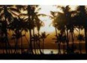 Скейт Republica Palm Sunset