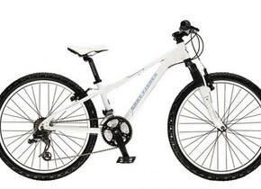 Велосипед Gary Fisher PreCaliber 24