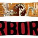 Сноуборд Arbor Coda