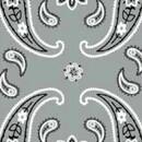 Велосипед Wind X-treme COOLWIND Cashmire grey