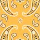 Велосипед Wind X-treme Cashmire yellow