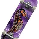 Скейт СК (Спортивная коллекция) Seahorse