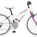 Велосипед AGang Angel 24