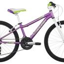 Велосипед Raleigh Ivy