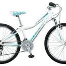 Велосипед Giant Areva 1 24
