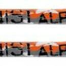 Лыжи Head ALPINIST
