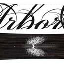 Сноуборд Arbor Abacus
