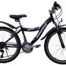 Велосипед Winner Amigo 24