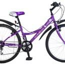 Велосипед NOVATRACK Х44898 Littlest PetShop