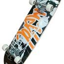 Скейт Flexter FLN-148
