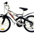 Велосипед REGGY RG20B3000
