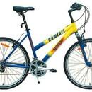 Велосипед REGGY RG26B25220
