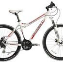 Велосипед Smart Bikes Machine 500