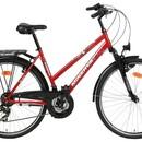Велосипед Minerva Prior M319