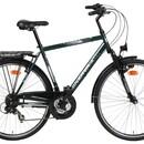 Велосипед Minerva Prior M318
