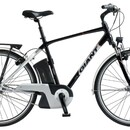 Велосипед Giant Twist Freedom 1 GTS CS