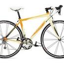 Велосипед Trek 2.1 WSD