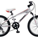 Велосипед Giant Brass Jr 20