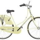 Велосипед PANTHER CT-1 P325